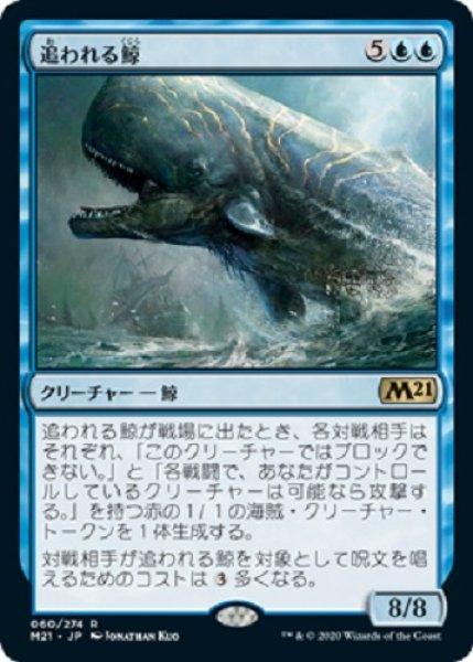 画像1: 追われる鯨 (1)
