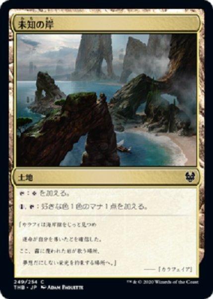 画像1: 未知の岸 (1)